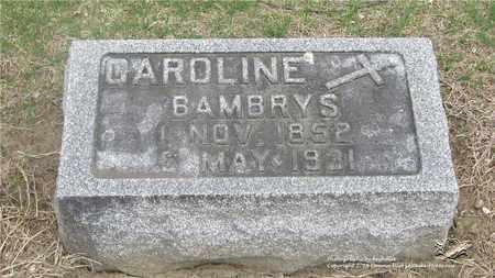 KUJAWA BAMBRYS, CAROLINE - Lucas County, Ohio | CAROLINE KUJAWA BAMBRYS - Ohio Gravestone Photos
