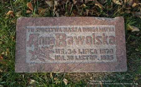 BAWOLSKA, ANNA - Lucas County, Ohio | ANNA BAWOLSKA - Ohio Gravestone Photos