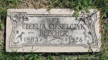BEECHER, CECELIA - Lucas County, Ohio   CECELIA BEECHER - Ohio Gravestone Photos