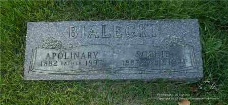 WESOLOWSKI BIALECKI, SOPHIE - Lucas County, Ohio | SOPHIE WESOLOWSKI BIALECKI - Ohio Gravestone Photos