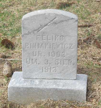 BINIAKIEWICZ, FELIKS - Lucas County, Ohio | FELIKS BINIAKIEWICZ - Ohio Gravestone Photos