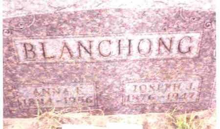 KOLODZAIKE BLANCHONG, ANNA M. - Lucas County, Ohio | ANNA M. KOLODZAIKE BLANCHONG - Ohio Gravestone Photos