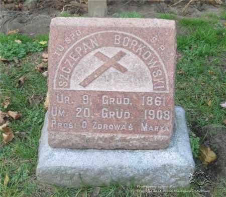 BORKOWSKI, SZCZEPAN - Lucas County, Ohio | SZCZEPAN BORKOWSKI - Ohio Gravestone Photos