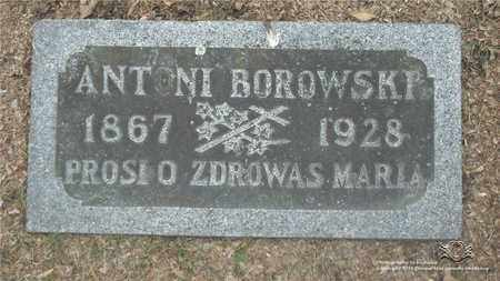 BOROWSKI, ANTONI - Lucas County, Ohio | ANTONI BOROWSKI - Ohio Gravestone Photos
