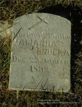 BROCKA, MARYANNA - Lucas County, Ohio | MARYANNA BROCKA - Ohio Gravestone Photos