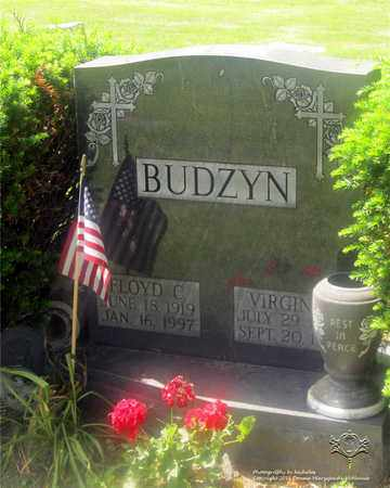 ZOLTANSKI BUDZYN, VIRGINIA - Lucas County, Ohio | VIRGINIA ZOLTANSKI BUDZYN - Ohio Gravestone Photos
