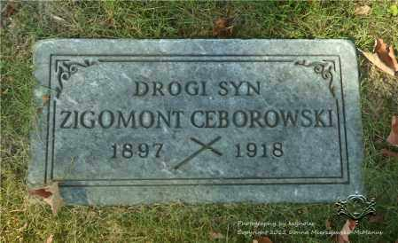 CIBOROWSKI, ZIGOMONT - Lucas County, Ohio   ZIGOMONT CIBOROWSKI - Ohio Gravestone Photos