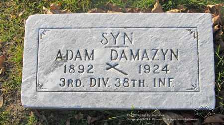 DAMAZYN, ADAM - Lucas County, Ohio | ADAM DAMAZYN - Ohio Gravestone Photos