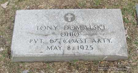 DOMALSKI, TONY - Lucas County, Ohio   TONY DOMALSKI - Ohio Gravestone Photos