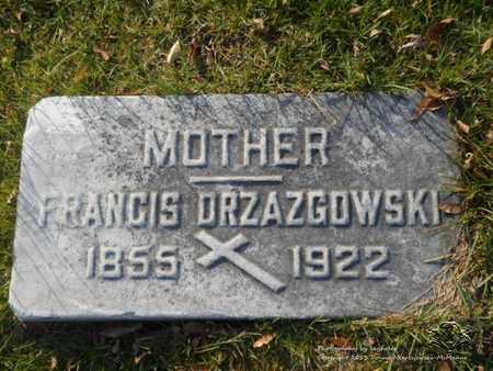 DRZAZGOWSKI, FRANCIS - Lucas County, Ohio | FRANCIS DRZAZGOWSKI - Ohio Gravestone Photos