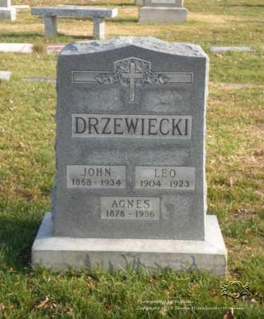 DRZEWIECKI, AGNES - Lucas County, Ohio | AGNES DRZEWIECKI - Ohio Gravestone Photos