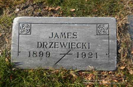 DRZEWIECKI, JAMES - Lucas County, Ohio | JAMES DRZEWIECKI - Ohio Gravestone Photos