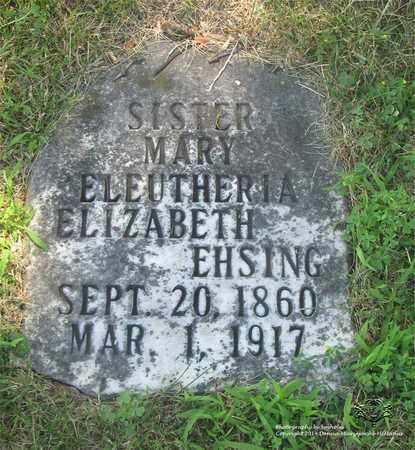 EHSING, ELIZABETH - Lucas County, Ohio | ELIZABETH EHSING - Ohio Gravestone Photos