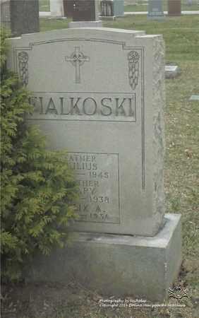 FIALKOSKI, JULIUS - Lucas County, Ohio | JULIUS FIALKOSKI - Ohio Gravestone Photos