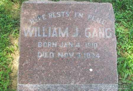 GANG, WILLIAM J. - Lucas County, Ohio | WILLIAM J. GANG - Ohio Gravestone Photos