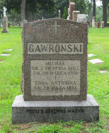 OLCZAK GAWRONSKI, ANTONINA - Lucas County, Ohio | ANTONINA OLCZAK GAWRONSKI - Ohio Gravestone Photos