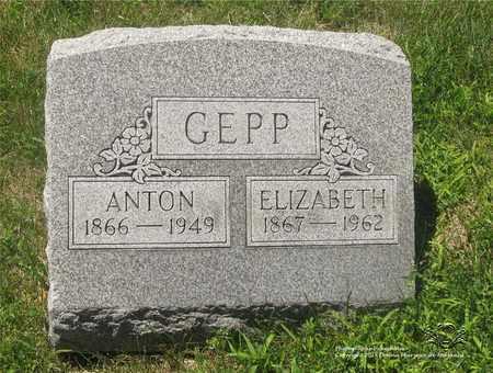 WILSIUS GEPP, ELIZABETH - Lucas County, Ohio | ELIZABETH WILSIUS GEPP - Ohio Gravestone Photos