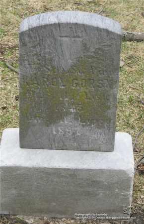 GORSKI, KAROL - Lucas County, Ohio | KAROL GORSKI - Ohio Gravestone Photos