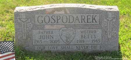 GOSPODAREK, BETTY - Lucas County, Ohio | BETTY GOSPODAREK - Ohio Gravestone Photos