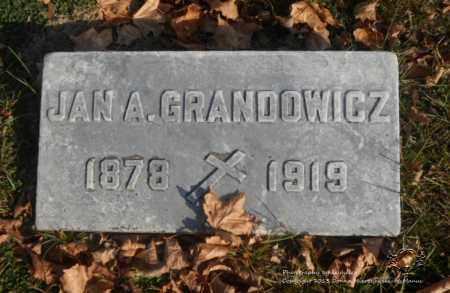 GRANDOWICZ, JAN A. - Lucas County, Ohio | JAN A. GRANDOWICZ - Ohio Gravestone Photos
