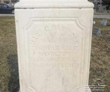 HAMILTON, MARY C. - Lucas County, Ohio | MARY C. HAMILTON - Ohio Gravestone Photos