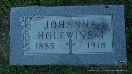 WISNIEWSKI HOLEWINSKI, JOHANNA - Lucas County, Ohio | JOHANNA WISNIEWSKI HOLEWINSKI - Ohio Gravestone Photos
