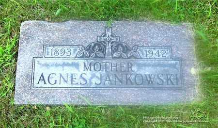 ROMINSKI JANKOWSKI, AGNES - Lucas County, Ohio | AGNES ROMINSKI JANKOWSKI - Ohio Gravestone Photos