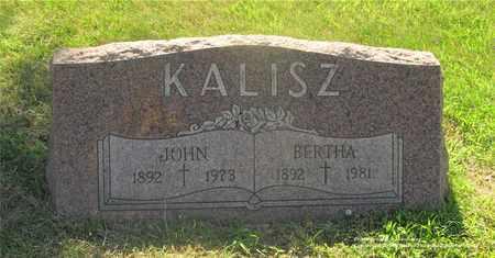 KALISZ, BERTHA - Lucas County, Ohio | BERTHA KALISZ - Ohio Gravestone Photos