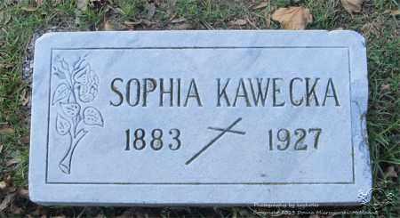 KAWECKA, SOPHIA - Lucas County, Ohio | SOPHIA KAWECKA - Ohio Gravestone Photos