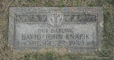 KNAPIK, DAVID JOHN - Lucas County, Ohio | DAVID JOHN KNAPIK - Ohio Gravestone Photos
