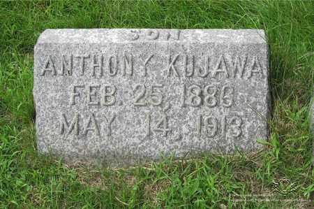 KUJAWA, ANTHONY - Lucas County, Ohio | ANTHONY KUJAWA - Ohio Gravestone Photos