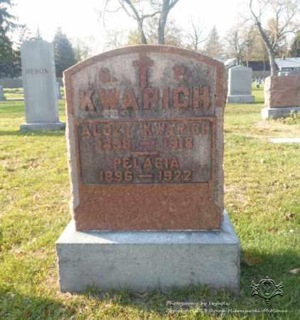 KWAPICH, ALOZY - Lucas County, Ohio | ALOZY KWAPICH - Ohio Gravestone Photos
