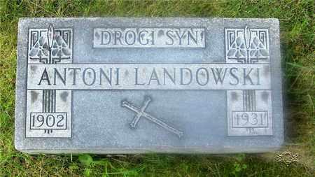 LANDOWSKI, ANTONI - Lucas County, Ohio | ANTONI LANDOWSKI - Ohio Gravestone Photos