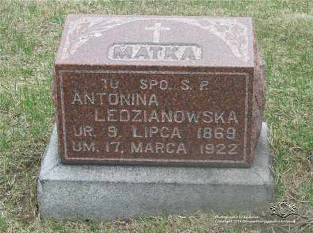 LEDZIANOWSKA, ANTONINA - Lucas County, Ohio   ANTONINA LEDZIANOWSKA - Ohio Gravestone Photos