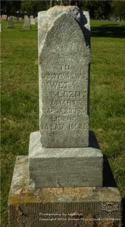 LOZNY, PAWEL - Lucas County, Ohio | PAWEL LOZNY - Ohio Gravestone Photos