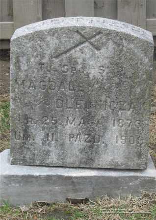 OLEJNICZAK, MAGDALENA - Lucas County, Ohio | MAGDALENA OLEJNICZAK - Ohio Gravestone Photos