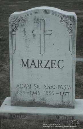 MARZEC, ANASTASIA - Lucas County, Ohio | ANASTASIA MARZEC - Ohio Gravestone Photos