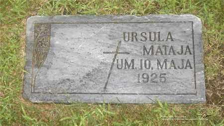 MATAJA, URSULA - Lucas County, Ohio | URSULA MATAJA - Ohio Gravestone Photos