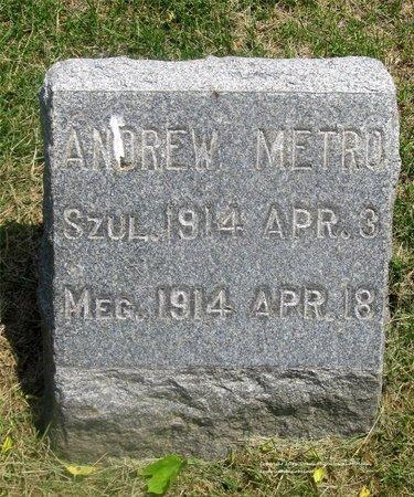 METRO, ANDREW - Lucas County, Ohio | ANDREW METRO - Ohio Gravestone Photos