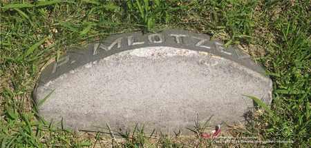 MLOTZE, P. - Lucas County, Ohio | P. MLOTZE - Ohio Gravestone Photos