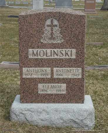 MOLINSKI, ELEANOR - Lucas County, Ohio | ELEANOR MOLINSKI - Ohio Gravestone Photos