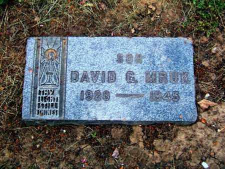 MRUK, DAVID GEORGE - Lucas County, Ohio | DAVID GEORGE MRUK - Ohio Gravestone Photos