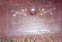 MULKEY, DALE GORDON - Lucas County, Ohio | DALE GORDON MULKEY - Ohio Gravestone Photos
