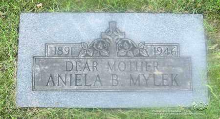 MIZDRAK MYLEK, ANIELA B. - Lucas County, Ohio   ANIELA B. MIZDRAK MYLEK - Ohio Gravestone Photos