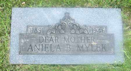 MYLEK, ANIELA B. - Lucas County, Ohio | ANIELA B. MYLEK - Ohio Gravestone Photos