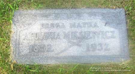 MALECKI MYSIEWICZ, APOLONIA - Lucas County, Ohio | APOLONIA MALECKI MYSIEWICZ - Ohio Gravestone Photos