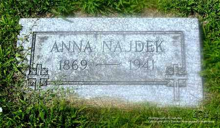 NAJDEK, ANNA - Lucas County, Ohio | ANNA NAJDEK - Ohio Gravestone Photos