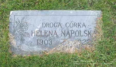 NAPOLSKA, HELENA - Lucas County, Ohio | HELENA NAPOLSKA - Ohio Gravestone Photos