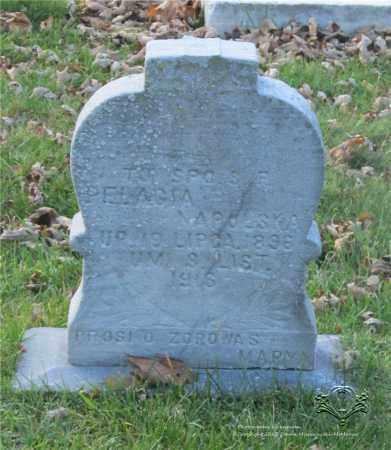 NAPOLSKA, PELAGIA - Lucas County, Ohio | PELAGIA NAPOLSKA - Ohio Gravestone Photos