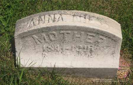 NIESS, ANNA - Lucas County, Ohio | ANNA NIESS - Ohio Gravestone Photos